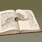 TRADUZIONE IN CINESE 翻译